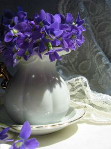 violets_and_lace